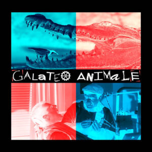 galateo-animale-band-emergente